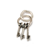 Sterling Silver 3 Keys on Keyring Charm
