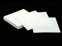 Pro Polish Pad (pack of 10)