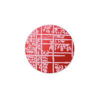 "Anodized Aluminum 5/8"" Circle, Red Design #6, 22g"