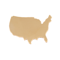 Brass United States Blank, 24g