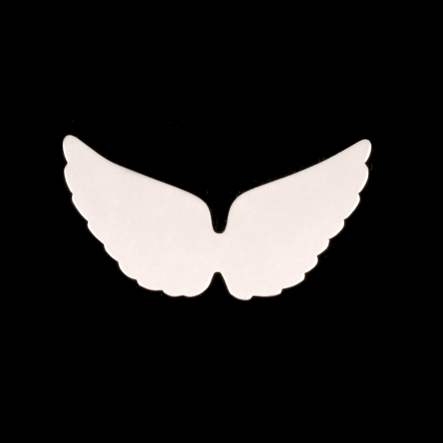 Sterling Silver Wings, 24g