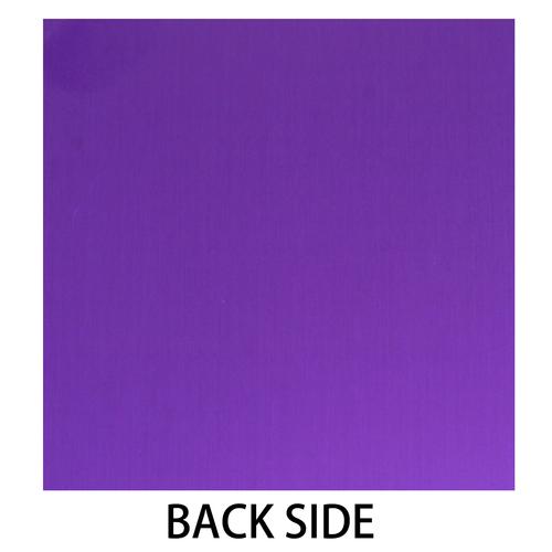 2012_0820_backpurple