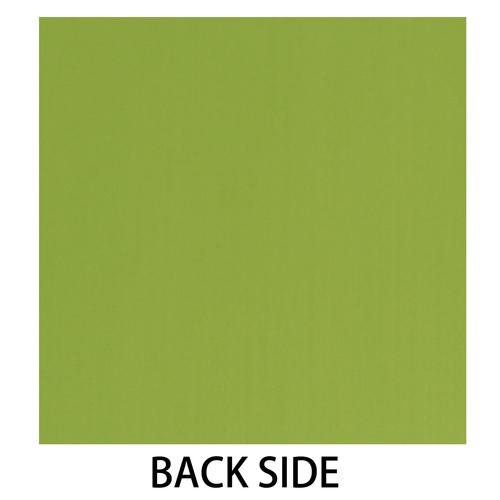 2012_0820_backlime